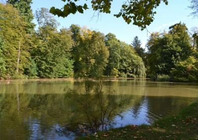 Divoký rybník 2015